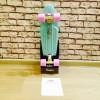 """Пенни Борд Ridex Minty 22"""" (56,5 см)"""