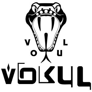 Официальный дилер Vokul - купить недорого в Москве и городах России